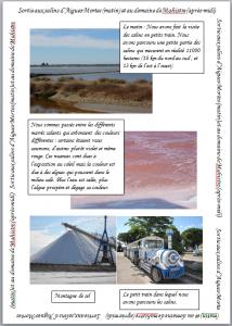 Sortie aux salins d'aigues Morte et au domaine de Mahistre dans Visites des salins article-salins-214x300